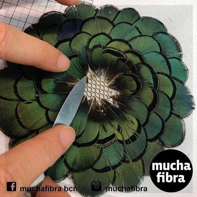 Las #plumas están de #moda  pero hoy en dia  casi no se enseña ese arte  En Muchafibra  tenemos un Master que te iniciara en sus tecnicas ! Inedito en #barcelona Informate!!#aprender#plumeria#diy#arte#textil #sombreroscondiseño #sombreros #complementos