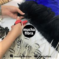 curso de plumeria, plumas en Barcelona