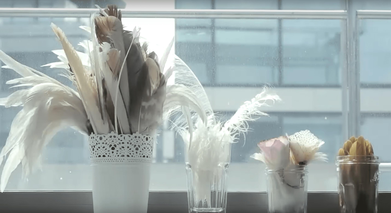 tipos differentes de plumas