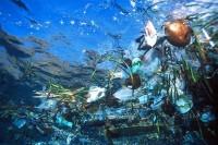 Basura Plásticas en el Mar