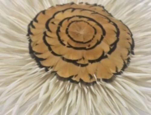 •PLUMERÍA•️Aroa Veiga Da Rocha se formó en #plumasserie con reconocidos artesanos franceses. Estará una vez más en #muchafibra impartiendo un curso de iniciación a la #plumería en el que enseñará los procesos de manipulación de ésta milenaria técnica de alta costura.•¡Apúntate! +info: www.muchafibra.com 935665157 #muchafibra #diseñadoresbcn #plumasserie #plumería #altacostura #diseñadoresemergentes #nuevosdiseñadores #plumas #barcelona #artetextil #modabarcelona